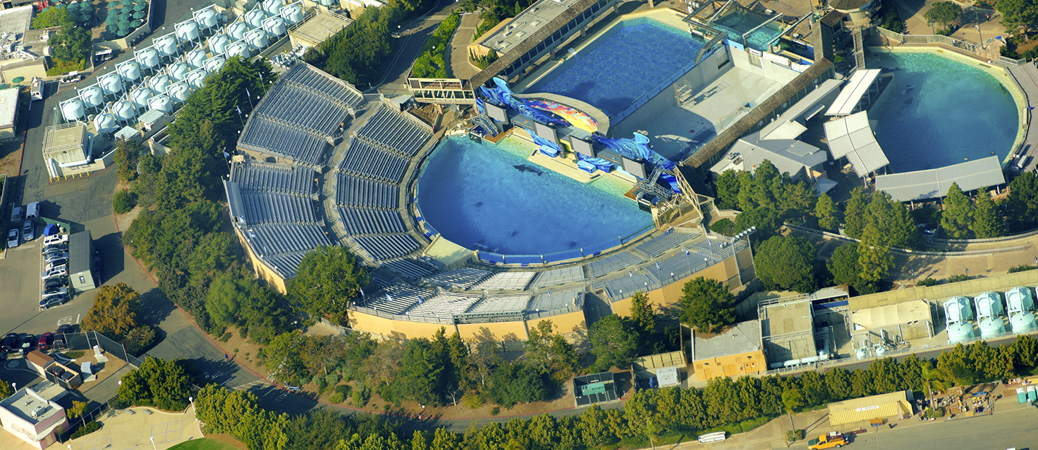 We Are Located Close To Sea World San Diego